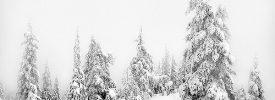 Vasárnap (01.21.) havazás várható egyes országrészekben