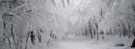 Frissítve – 2017 első komolyabb havazása várható Magyarországon